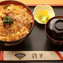 shoogun don arroz cebolla frita carne huevo